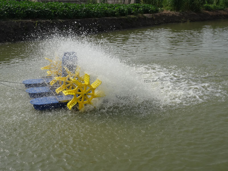 Aerator for Aquaculture